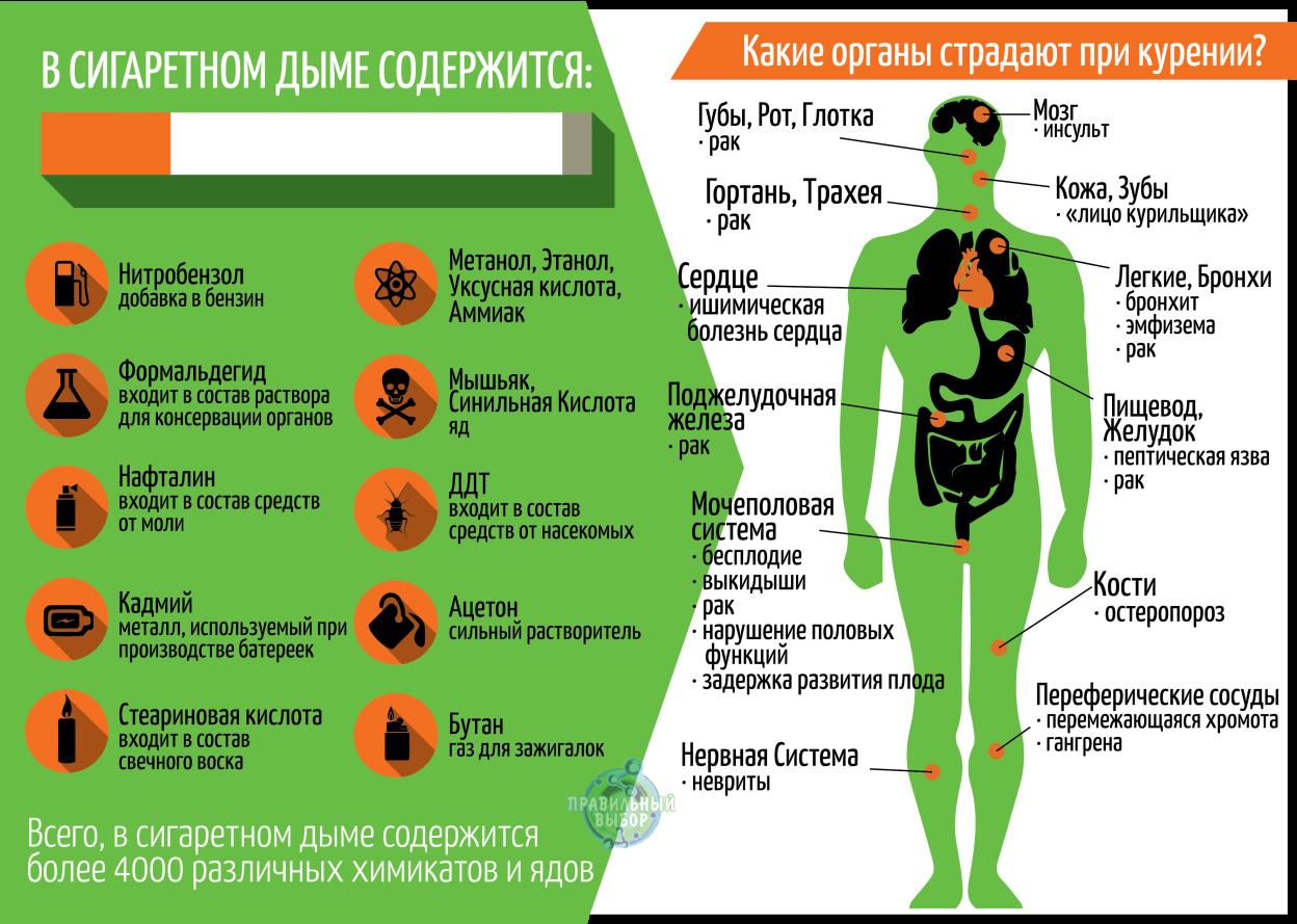 Какие органы страдают при курении?